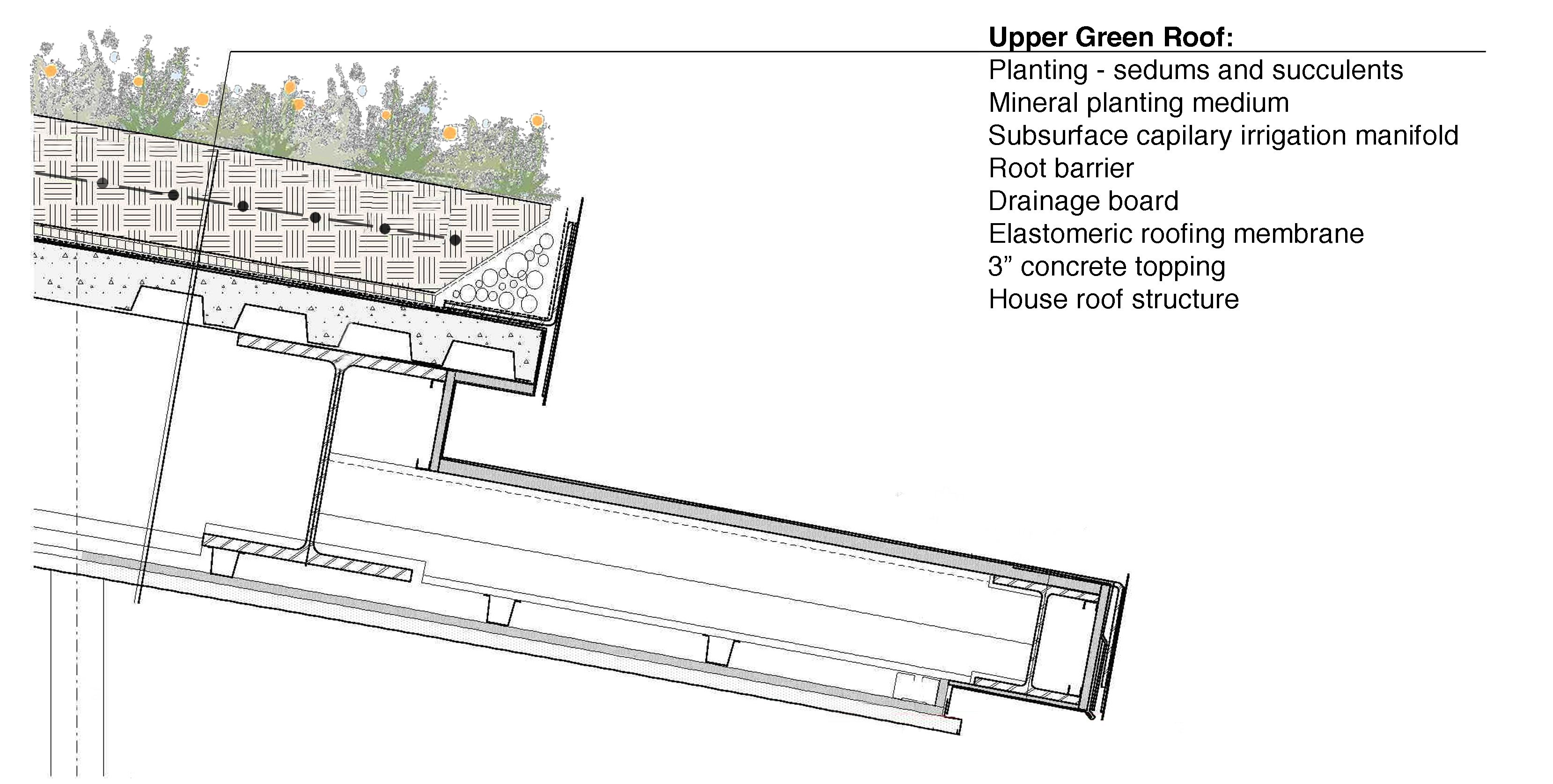 Eco Tech The Anatomy And Aesthetics Of Green Roofs
